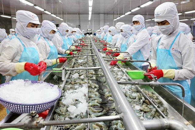 Đặt mục tiêu 20 tỷ USD vào năm 2030, chiến lược dài hơi nào cho con cá, con tôm Việt?  - Ảnh 1.