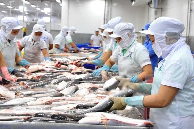 Đặt mục tiêu 20 tỷ USD vào năm 2030, chiến lược dài hơi nào cho con cá, con tôm Việt?  - Ảnh 2.