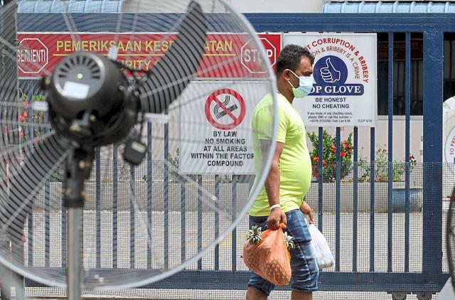 Malaysia đóng cửa chuỗi 28 nhà máy găng tay cao su lớn nhất thế giới - Ảnh 1.