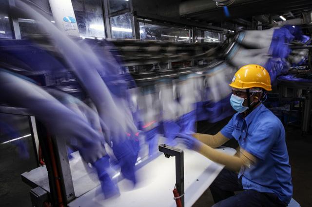 Malaysia đóng cửa chuỗi 28 nhà máy găng tay cao su lớn nhất thế giới - Ảnh 2.