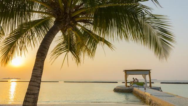 Vượt khó mùa Covid-19, quốc đảo Maldives tạo ra dịch vụ giãn cách xã hội sang chảnh như thiên đường để hút khách - Ảnh 5.