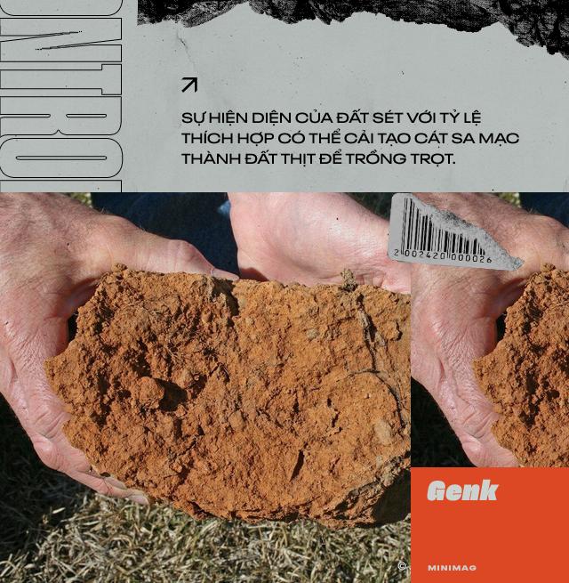 Đất sét nano: Công nghệ đột phá có thể biến sa mạc thành đồng ruộng trong 7 tiếng đồng hồ - Ảnh 1.