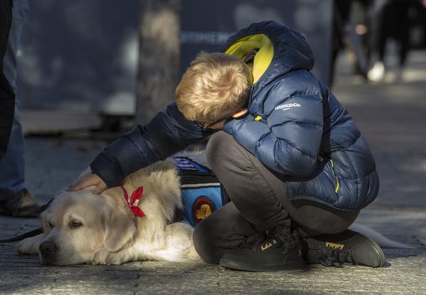 Câu chuyện cảm động về những chú chó trung thành nhất mọi thời đại khiến hàng triệu người không cầm được nước mắt - Ảnh 3.
