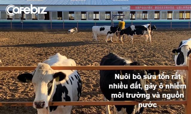 Uống sữa để yêu nước - Chiến dịch tăng chiều cao của người Trung Quốc và cái giá đắt đỏ đối với môi trường thế giới - Ảnh 2.