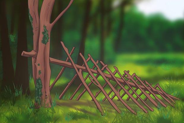 Loạt bí kíp sinh tồn sẽ giúp bạn thoát khỏi 6 tình huống cực nguy hiểm mà bản thân có thể đối mặt trong đời - Ảnh 6.