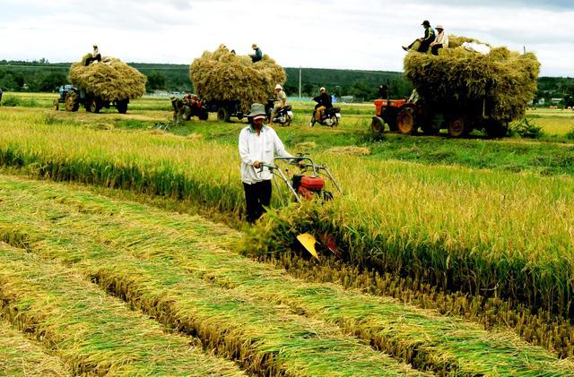 Việt Nam nổi lên là thiên đường sản xuất mới tại Đông Nam Á - Ảnh 2.