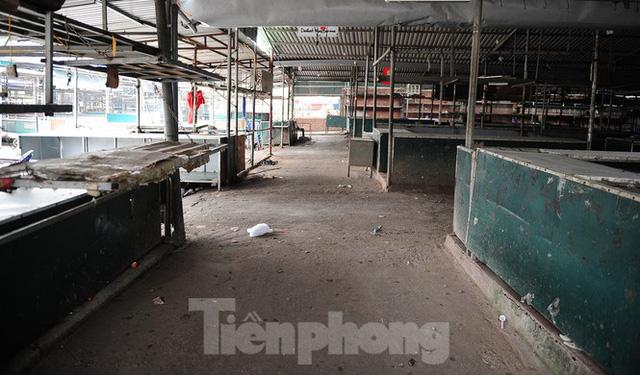 Chợ hoa lớn nhất Hà Nội đóng cửa chuyển sang bán hàng trực tuyến  - Ảnh 9.