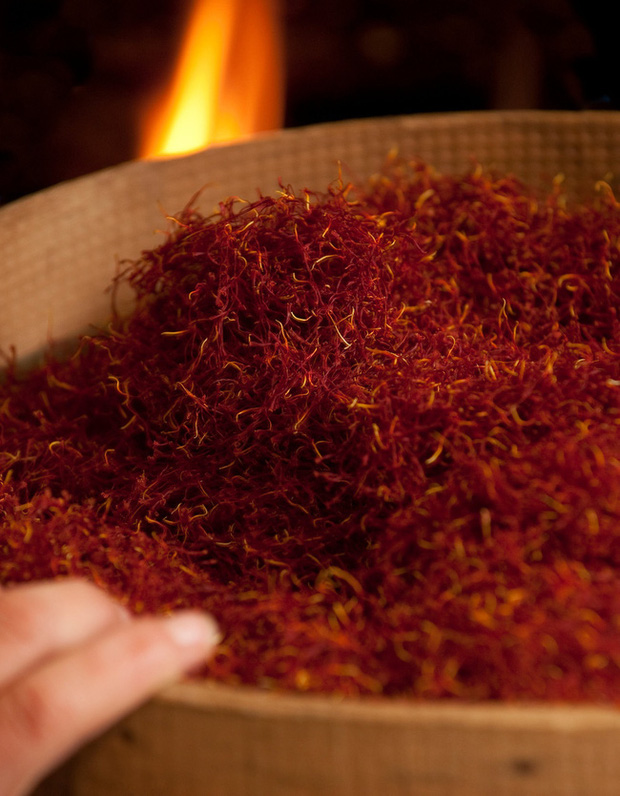 """Cận cảnh quá trình thu hoạch saffron - thứ gia vị đắt nhất thế giới được mệnh danh """"vàng đỏ"""" có giá hàng tỷ đồng/kg, từng được Nữ hoàng Ai Cập dùng để dưỡng nhan - Ảnh 7."""