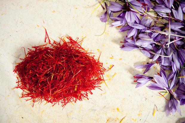 """Cận cảnh quá trình thu hoạch saffron - thứ gia vị đắt nhất thế giới được mệnh danh """"vàng đỏ"""" có giá hàng tỷ đồng/kg, từng được Nữ hoàng Ai Cập dùng để dưỡng nhan - Ảnh 8."""