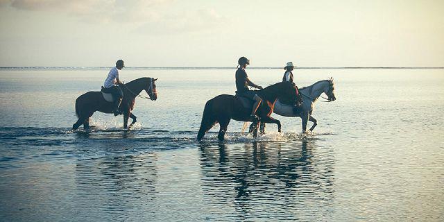 Muốn qua sông nhưng không nhờ ai trong đám kỵ sĩ, đến khi gặp người cuối cùng ông lão bất ngờ đổi ý - Ảnh 1.