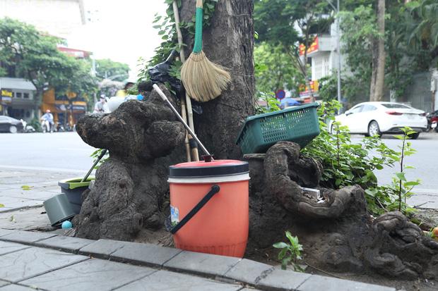Ảnh: Cận cảnh hàng loạt cây xanh mục gốc, ngả hướng ra giữa đường ở Hà Nội - Ảnh 14.