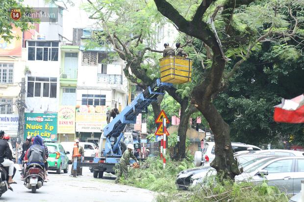 Ảnh: Cận cảnh hàng loạt cây xanh mục gốc, ngả hướng ra giữa đường ở Hà Nội - Ảnh 19.