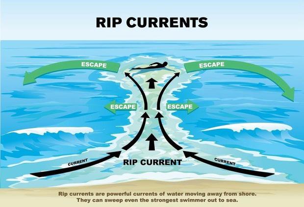 Cảnh báo về mối nguy hiểm mới xuất hiện ở các bãi biển Việt Nam có thể gây hại đến tính mạng của du khách mùa hè này: Không thể coi nhẹ! - Ảnh 4.