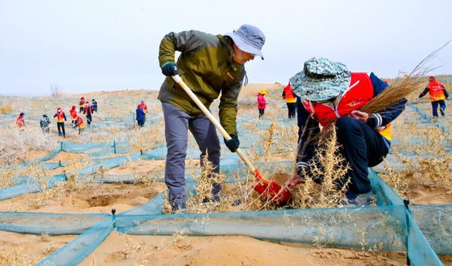 40 năm cặm cụi trồng rừng nơi cát sỏi, người phụ nữ biến hoang mạc thành thiên đường 10 vạn cây xanh  - Ảnh 3.