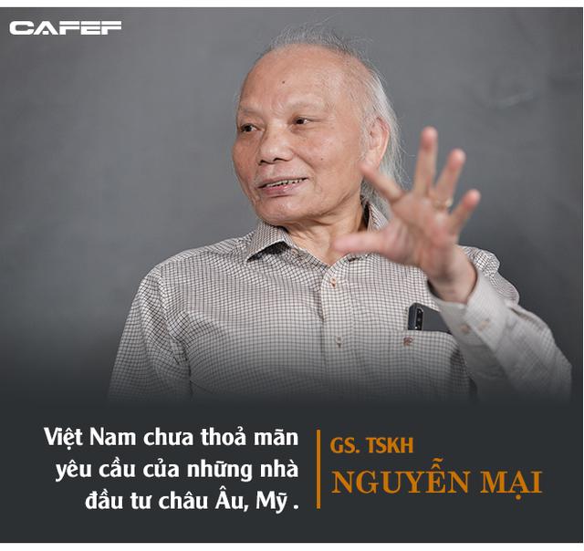 GS. Nguyễn Mại: Tương lai dòng FDI vào Việt Nam và nỗi lo của những doanh nghiệp như Samsung khi những Vingroup, Viettel... lớn lên - Ảnh 5.