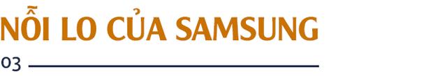 GS. Nguyễn Mại: Tương lai dòng FDI vào Việt Nam và nỗi lo của những doanh nghiệp như Samsung khi những Vingroup, Viettel... lớn lên - Ảnh 6.