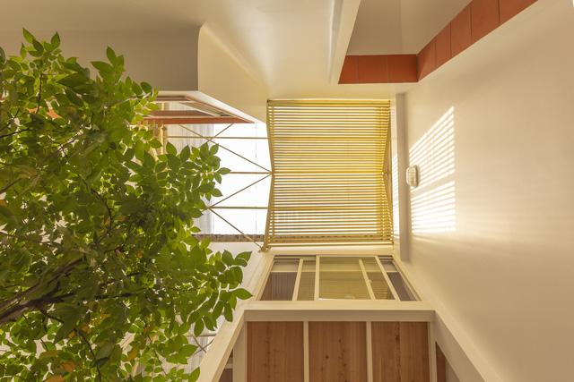 Nhà mái đôi có khả năng chống nắng tuyệt vời tại TP HCM - Ảnh 9.