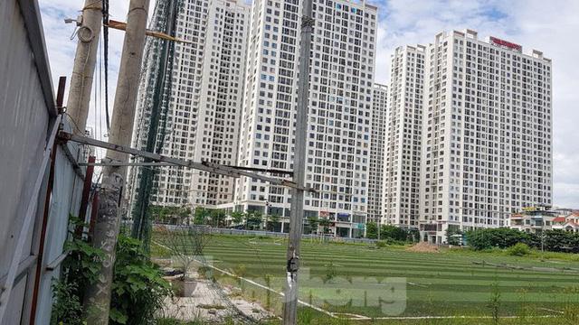 Hà Nội truy thu 35 tỷ đồng doanh nghiệp sử dụng đất sai mục đích  - Ảnh 1.