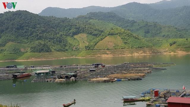 Thoát nghèo từ nuôi cá lồng trên lòng hồ thủy điện Sơn La  - Ảnh 1.