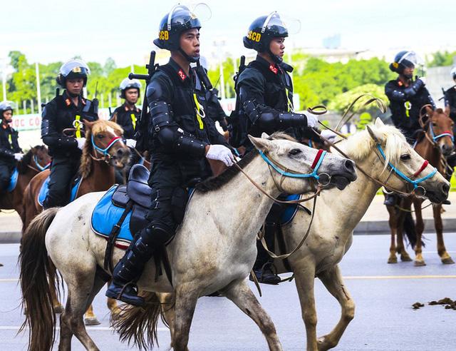 Chức năng, nhiệm vụ của đoàn Cảnh sát Cơ động Kỵ binh là gì?  - Ảnh 2.