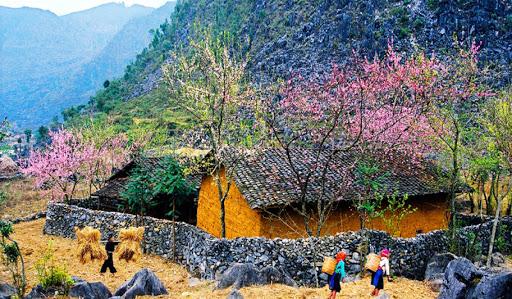 5 địa danh du lịch Việt Nam lọt top điểm đến tuyệt vời của thế giới - Ảnh 1.