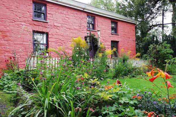 Bỏ 2 triệu mua nhà gạch tồi tàn, người phụ nữ cải tạo suốt chục năm khiến ngôi nhà tăng giá hơn 7000 lần với diện mạo mới đáng kinh ngạc - Ảnh 3.