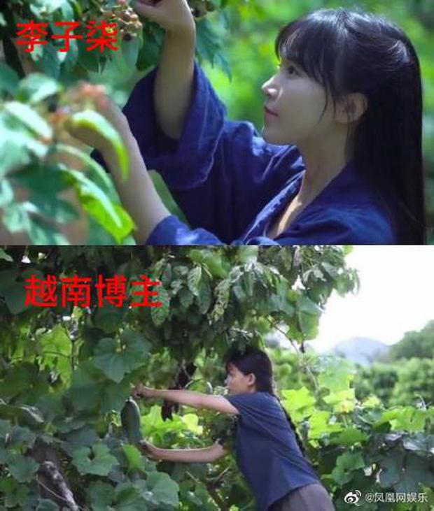 Netizen Trung Quốc lên án gay gắt một kênh Youtube Việt Nam vì nghi vấn đạo nhái Lý Tử Thất đến 80% - Ảnh 8.