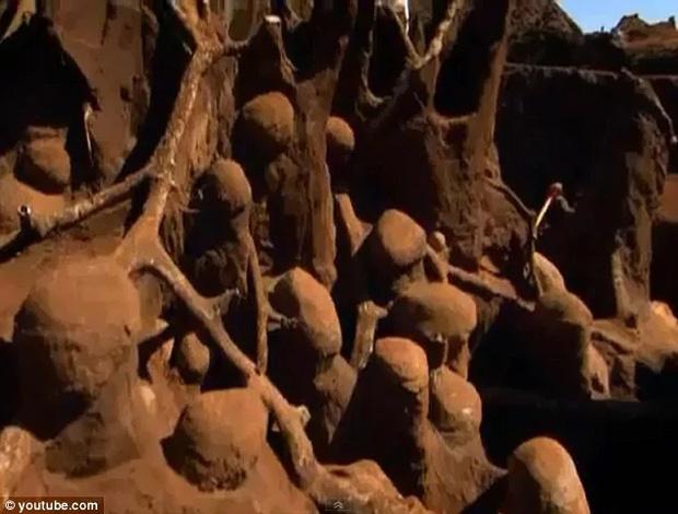 Đổ 10 tấn xi măng xuống tổ kiến dưới lòng đất, nhà khoa học không thể tin vào mắt mình khi khám phá ra thành phố khổng lồ - Ảnh 3.