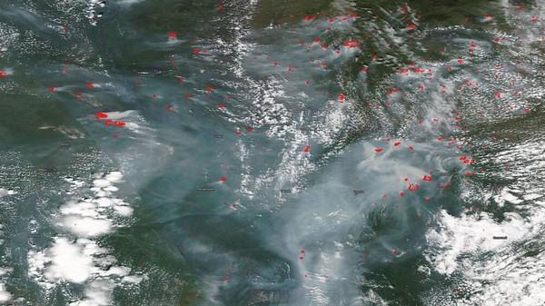 Đợt sóng nhiệt lớn tại Siberia khiến biển băng Bắc Cực tan với tốc độ đáng lo ngại - Ảnh 1.