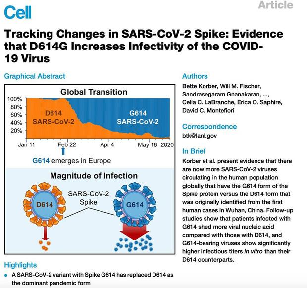 PGS.TS Huynh Wynn Tran: Chủng virus mới tại Việt Nam có thể là chủng D614G - hiện đang hoành hành ở châu Âu và Mỹ - Ảnh 3.