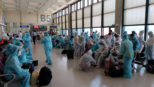 Hơn 240 người Việt từ Đài Loan về sân bay Tân Sơn Nhất - Ảnh 2.