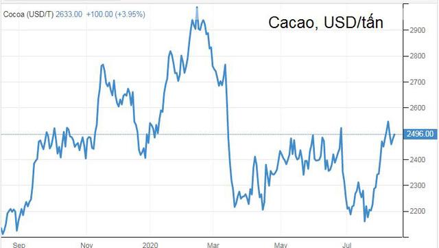 Dự báo đầu tư vào cà phê đến cuối năm sẽ sinh lời, đường và cacao nguy cơ lỗ  - Ảnh 3.