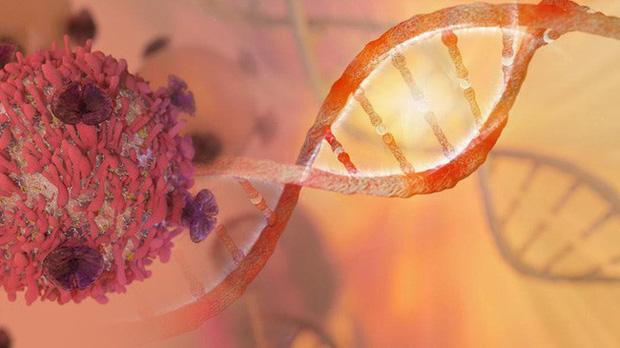 Không phải cứ mắc ung thư là chết: 4 loại ung thư có cơ hội được chữa khỏi trên 90% nếu như bạn ghi nhớ nguyên tắc này của bác sĩ - Ảnh 2.