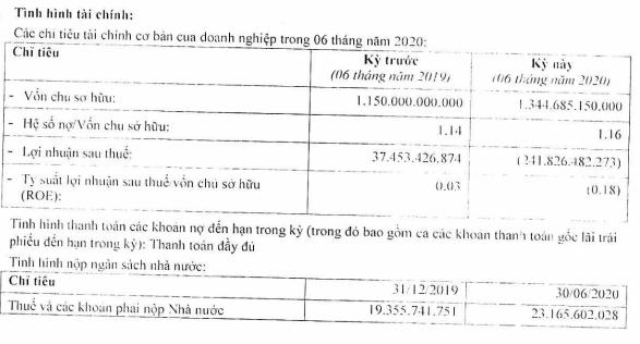 Thiên Minh Group lỗ ròng 242 tỷ sau 6 tháng, liệu tân binh hàng không KiteAir có tiếp tục lỡ chuyến? - Ảnh 1.