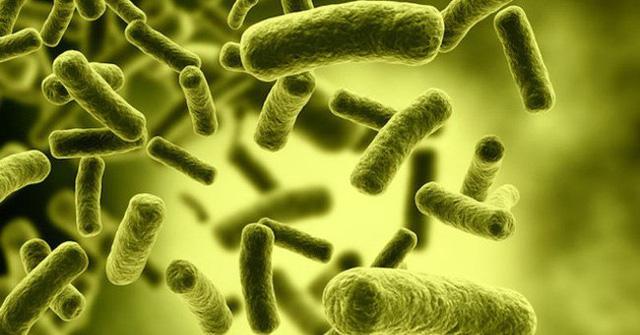Bác sĩ Bệnh viện Xanh Pôn  cảnh báo độc tố của vi khuẩn trong pate Minh Chay khiến 9 người nhập viện: Hãy tránh xa botulinum vì đó là chất độc khét tiếng số 1 thế giới! - Ảnh 2.