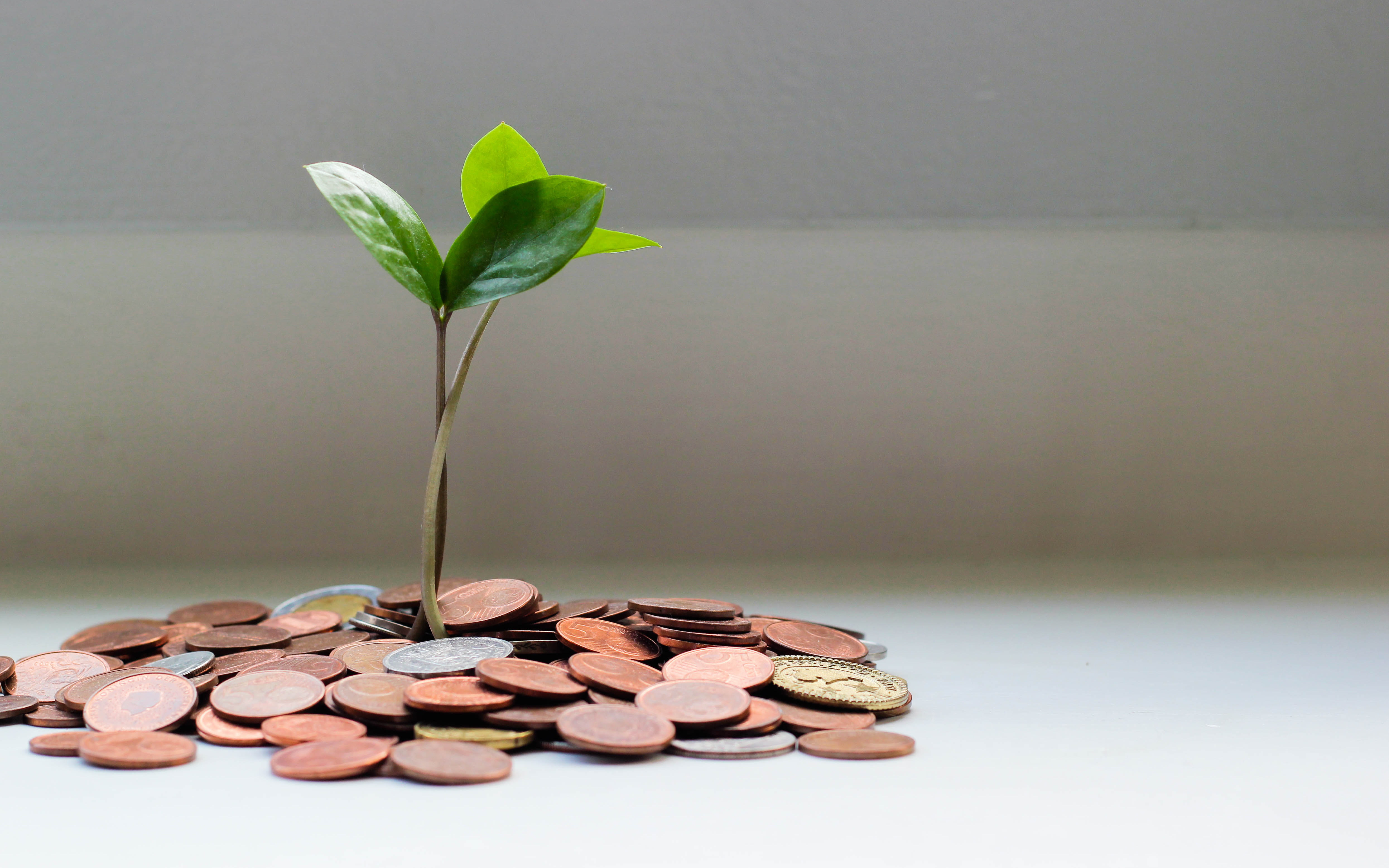 Nghỉ hưu sớm ở tuổi 35 với số tiền kếch xù trong tài khoản: 5 nguyên tắc quản lý tài chính của bậc cao thủ nhưng nhiều người xem nhẹ!