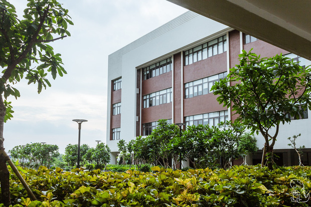 Tham quan ngôi trường chuyên 600 tỷ hiện đại thứ 2 Đông Nam Á ở Bắc Ninh: Trường người ta là đây chứ đâu! - Ảnh 3.