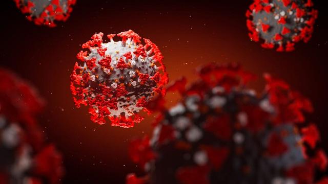 Phát hiện kháng thể vô hiệu hóa virus gây đại dịch Covid-19  - Ảnh 1.