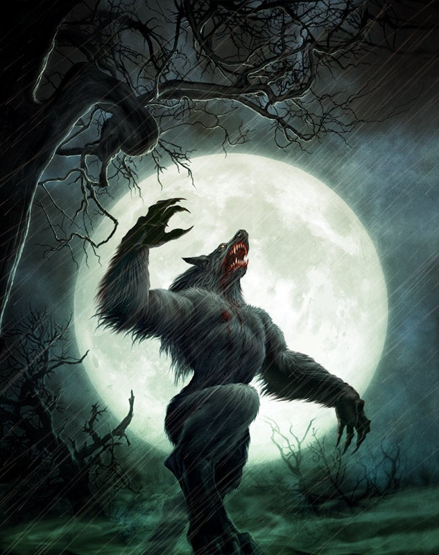 Những vụ săn lùng người sói tàn bạo và khủng khiếp từng diễn ra ở châu Âu thời xưa - Ảnh 1.