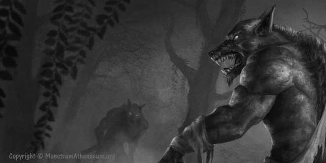 Những vụ săn lùng người sói tàn bạo và khủng khiếp từng diễn ra ở châu Âu thời xưa - Ảnh 3.