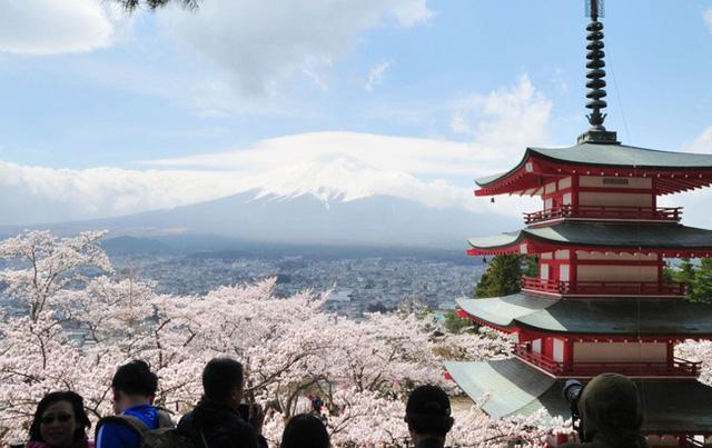 Hơn 13 triệu người Nhật tham gia chiến dịch go to travel - Ảnh 3.