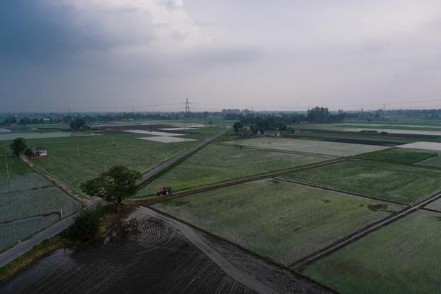 Khủng hoảng chồng khủng hoảng: Nhiều nông dân Ấn Độ tự tử trong đại dịch COVID-19 - Ảnh 1.