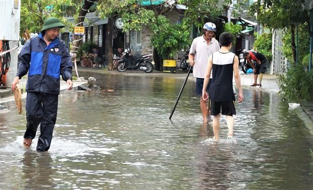 Clip: Người Đà Nẵng thích thú mang rổ ra đường phố bắt cá sau bão số 5 - Ảnh 4.