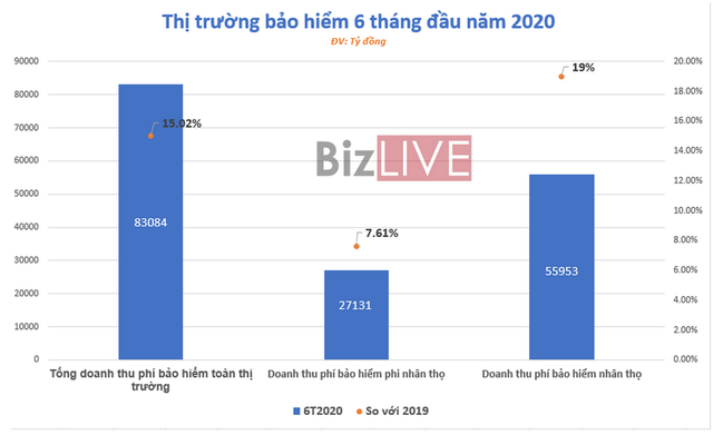 [Chart] Bức tranh thị trường bảo hiểm Việt Nam 6 tháng đầu năm  - Ảnh 1.