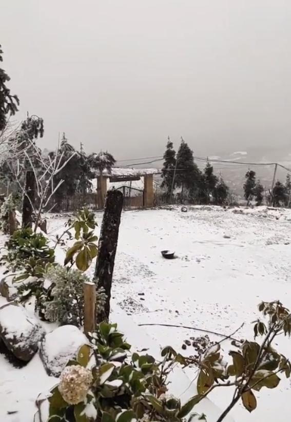 Những khoảnh khắc băng tuyết phủ trắng Y Tý - Sapa, hoa đào nở đóng băng đẹp như cổ tích là dịp vô cùng hiếm hoi để du lịch vào thời điểm này! - Ảnh 27.