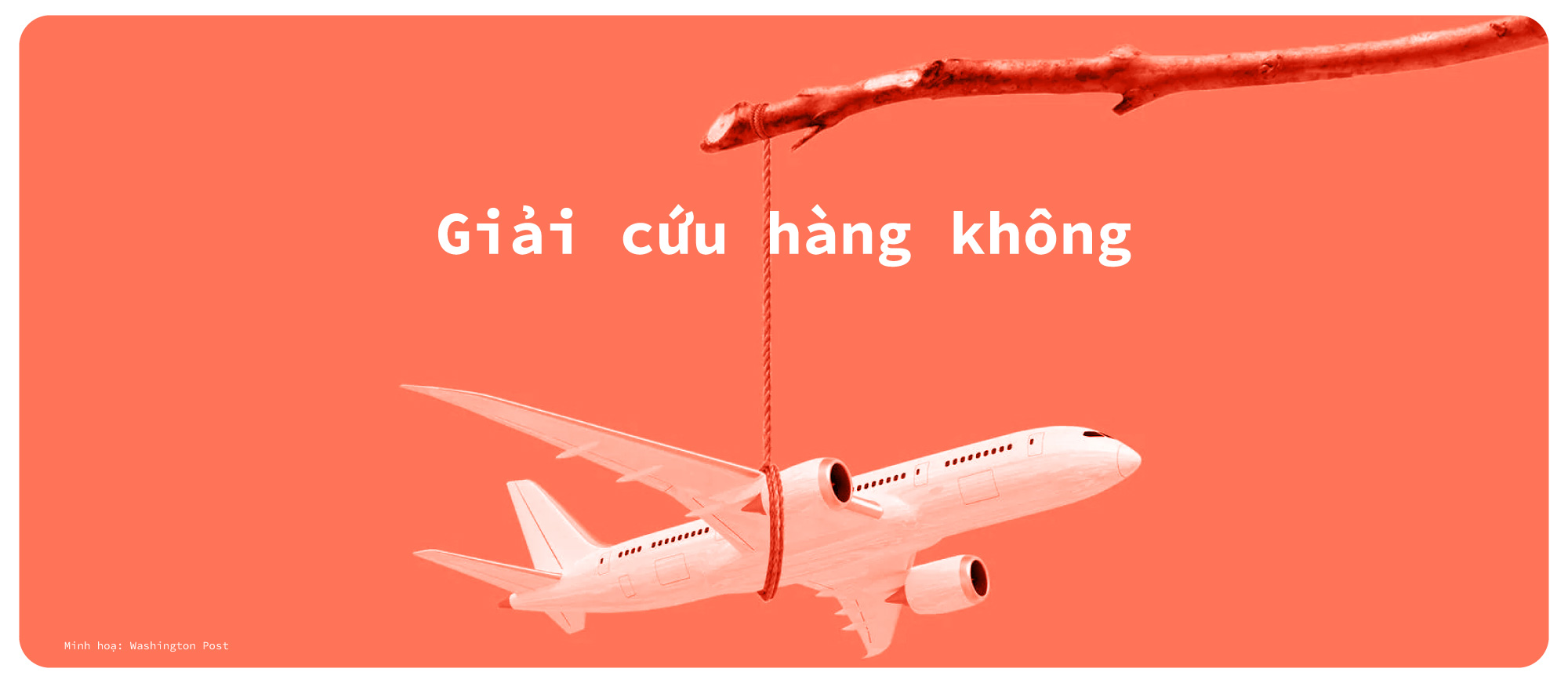 Hàng không Việt một năm 'bay trong bão' - Ảnh 6.