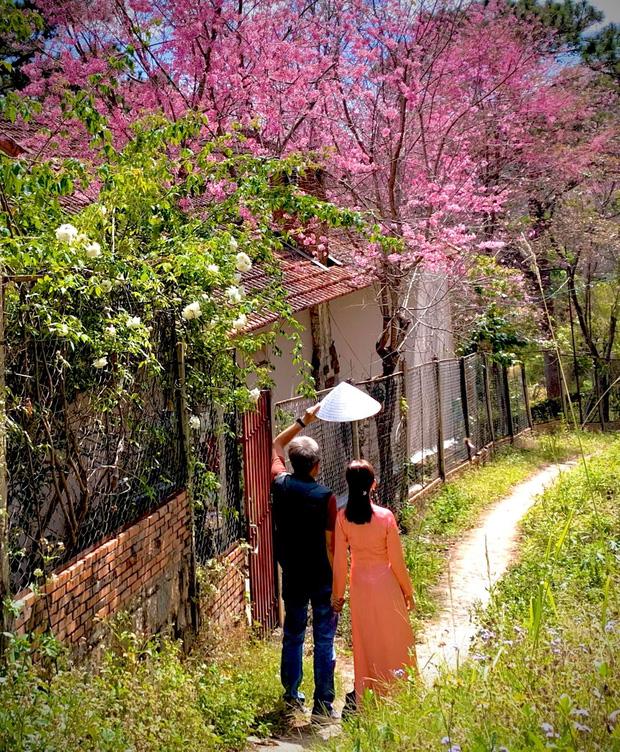 Rời Sài Gòn, cặp vợ chồng lên Đà Lạt xây ngôi nhà hướng mặt ra thung lũng, nhìn vườn hoa đào đẹp như cổ tích mà mê mệt - Ảnh 3.