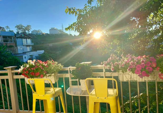 Rời Sài Gòn, cặp vợ chồng lên Đà Lạt xây ngôi nhà hướng mặt ra thung lũng, nhìn vườn hoa đào đẹp như cổ tích mà mê mệt - Ảnh 24.