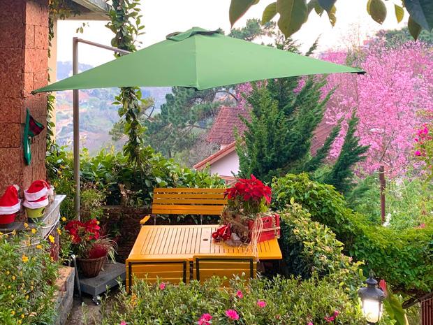 Rời Sài Gòn, cặp vợ chồng lên Đà Lạt xây ngôi nhà hướng mặt ra thung lũng, nhìn vườn hoa đào đẹp như cổ tích mà mê mệt - Ảnh 27.