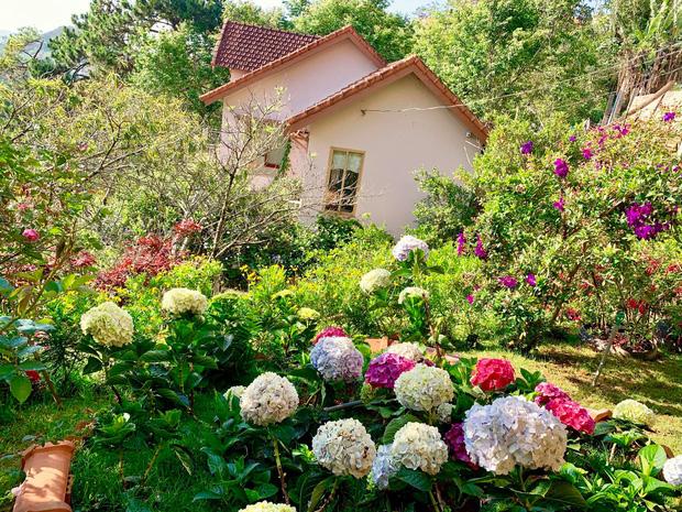 Rời Sài Gòn, cặp vợ chồng lên Đà Lạt xây ngôi nhà hướng mặt ra thung lũng, nhìn vườn hoa đào đẹp như cổ tích mà mê mệt - Ảnh 5.